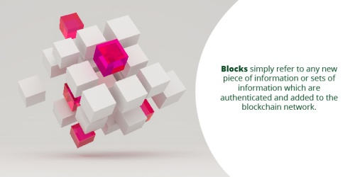 Blockchain Blocks for Data Organization